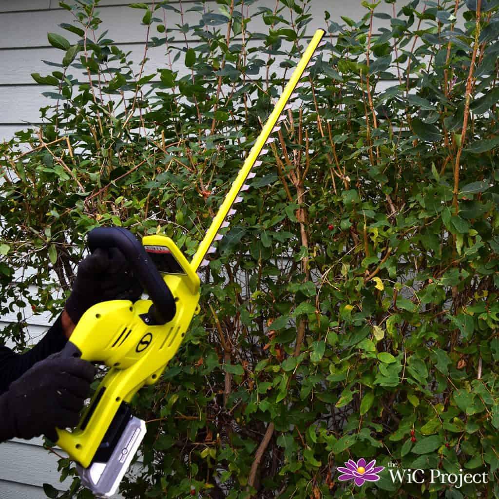 Sun Joe 24V Cordless Hedge Trimmer Kit Review